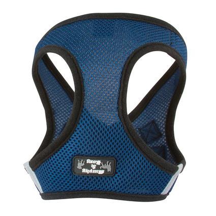 X-Large Blue Harness