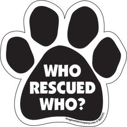 Who Rescued Who Car Magnet