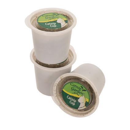Catnip Cups, 3 Pack